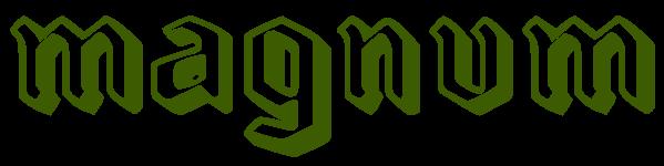 Magnum Jagodina